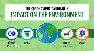 HOW TO SUSTAIN POSITIVE ENVIRONMENTAL SHIFT POST-PANDEMIC
