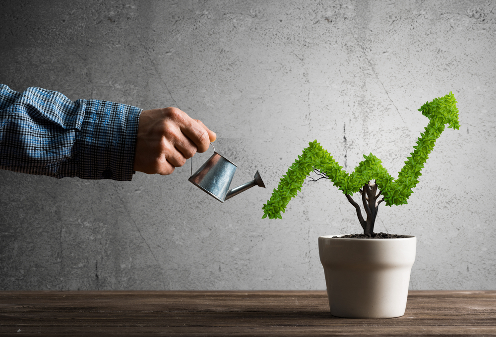 Business Growth Strategies