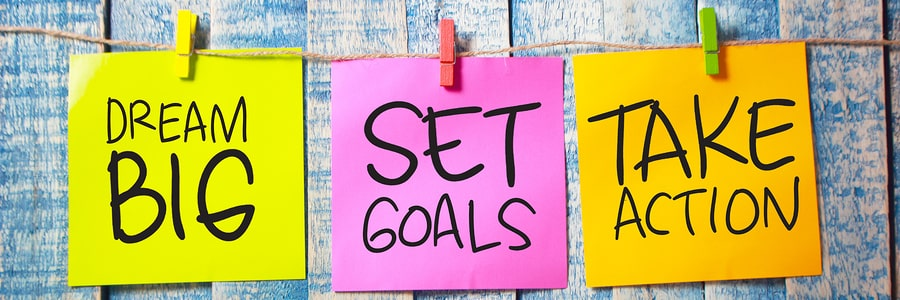 Set goals and develop business growth strategies